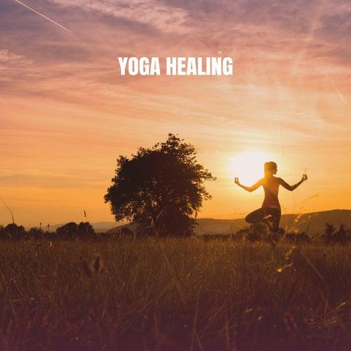 Yoga Healing von Various Artists