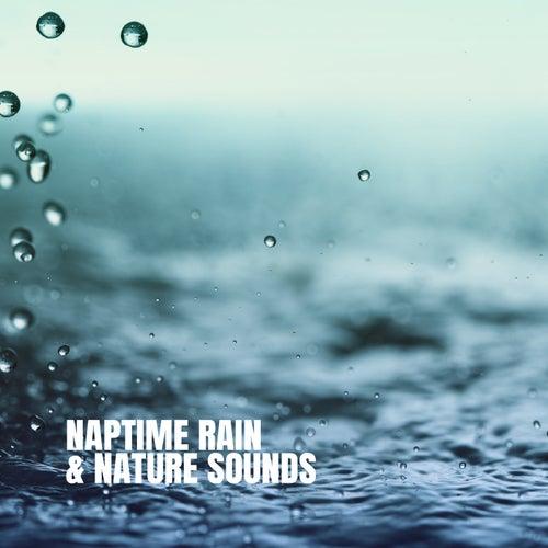 Naptime Rain & Nature Sounds de Various Artists