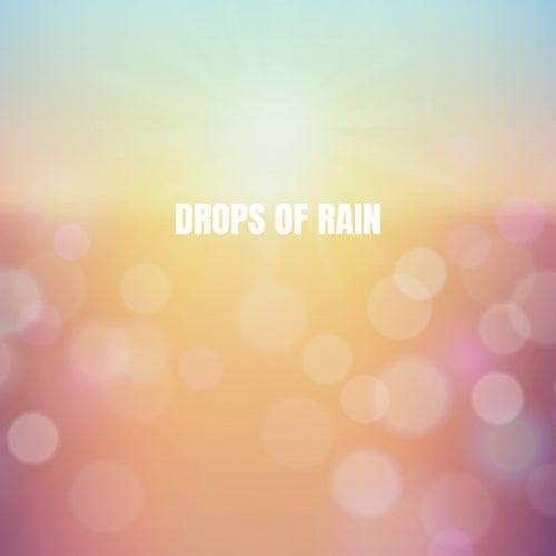 Drops of Rain de Various Artists