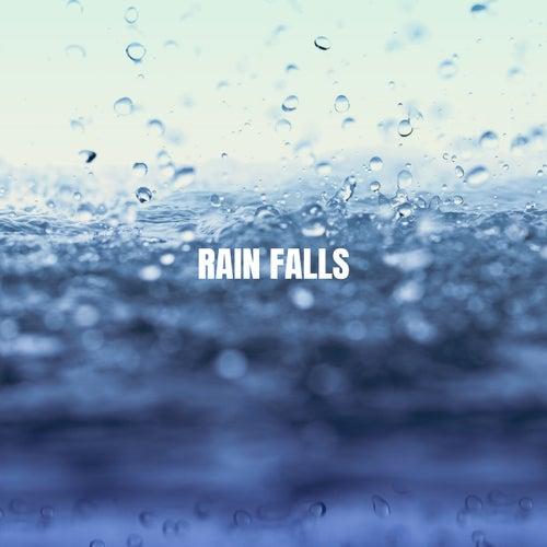 Rain Falls de Various Artists