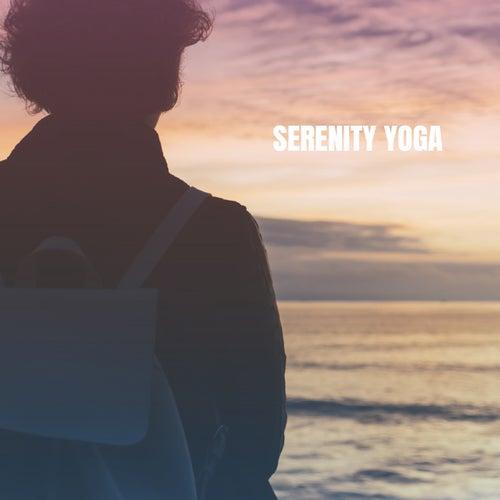Serenity Yoga de Various Artists
