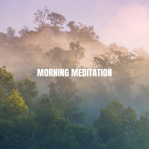 Morning Meditation von Various Artists