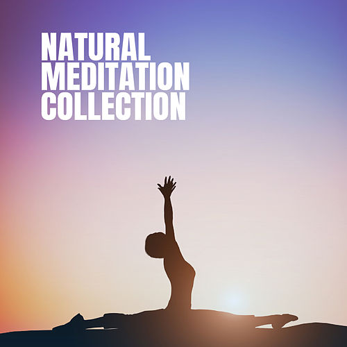 Natural Meditation Collection de Various Artists