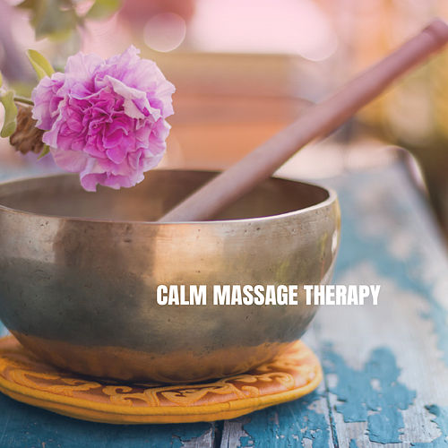 Calm Massage Therapy von Various Artists