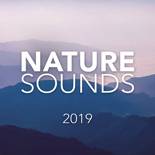 Nature Sounds 2019 - EP von Soothing Sounds