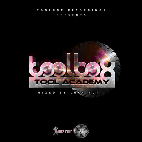 Tool Academy, Vol. 2 (Mixed by Lucy Fur) - EP de Various Artists
