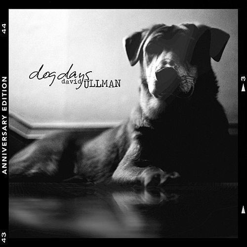 Dog Days (Anniversary Edition) von David Ullman