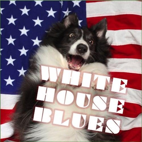White House Blues de Various Artists
