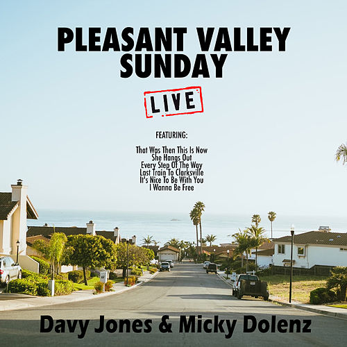 Pleasent Valley Sunday (Live) von Davy Jones