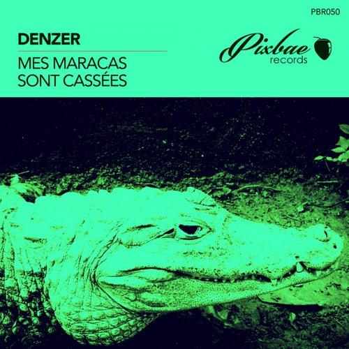Mes maracas sont cassées by Denzer