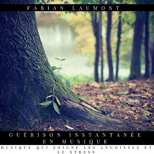 Guérison Instantanée en Musique (Musique Qui Soigne Les Angoisses Et Le Stress) von Fabian Laumont