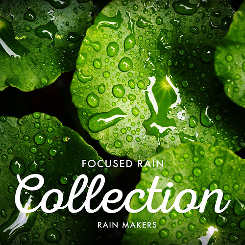 Focused Rain Collection de Rainmakers