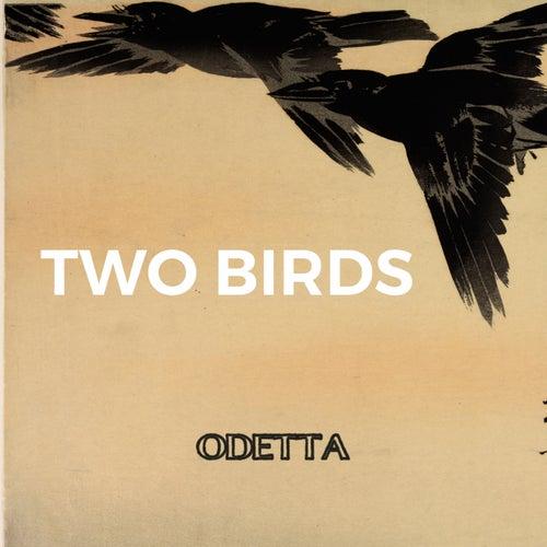 Two Birds by Odetta