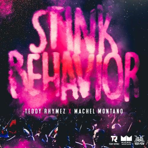 Stink Behavior by Teddy Rhymez