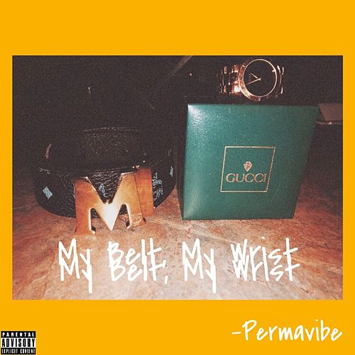 My Belt, My Wrist de PermaVibe