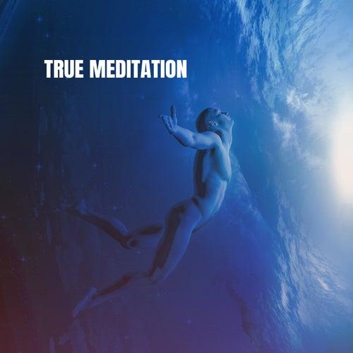 True Meditation von Various Artists