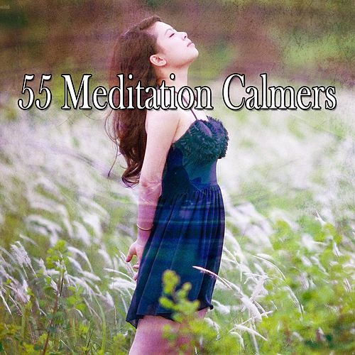 55 Meditation Calmers de Nature Sounds Artists