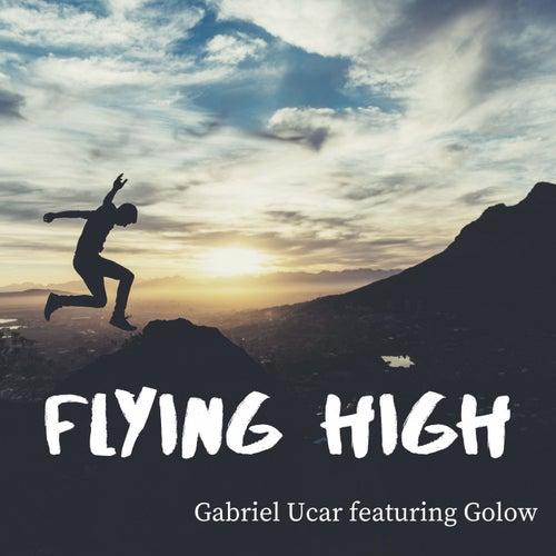 Flying High (Radio Edit) de Gabriel