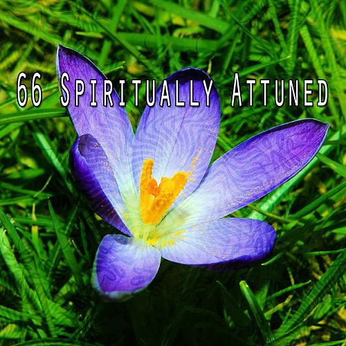 66 Spiritually Attuned by Asian Traditional Music