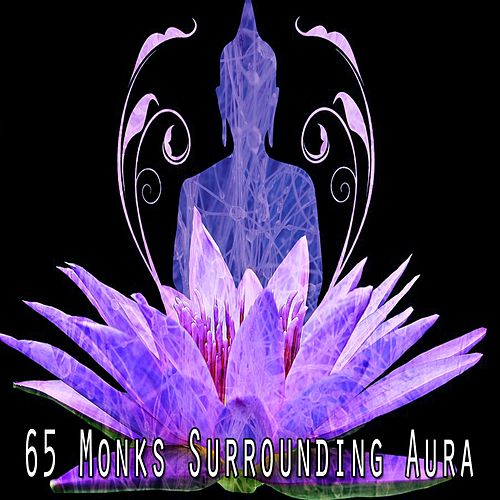 65 Monks Surrounding Aura de White Noise Research (1)