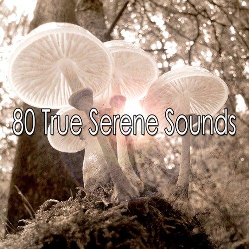 80 True Serene Sounds de Meditación Música Ambiente