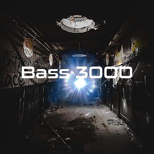 Bass 3000 von King Of Bass