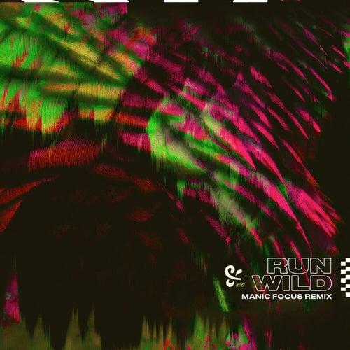 Run Wild (Manic Focus Remix) von Pls&Ty