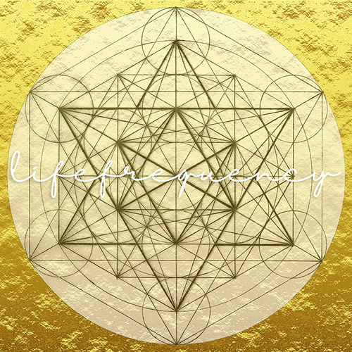 Life Frequency by LP