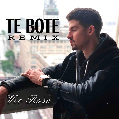Te Boté Remix von Vic Rose