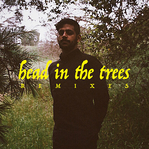 Head In The Trees (Remixes) von Hotel Garuda