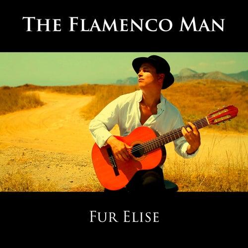 Fur Elise von The Flamenco Man