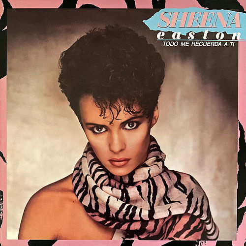 Todo Me Recuerda a Ti by Sheena Easton
