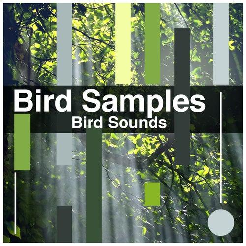 Bird Samples by Bird Sounds