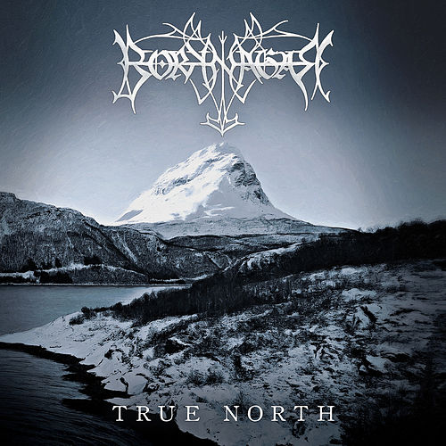 True North by Borknagar