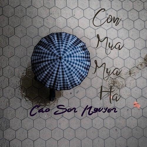 Cơn Mưa Mùa Hạ von Cao Son Nguyen
