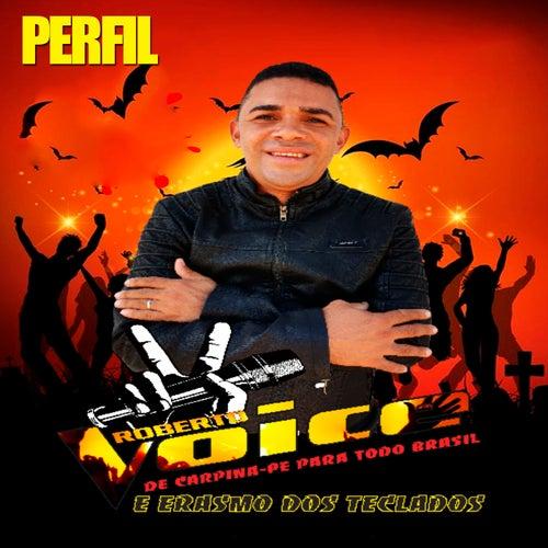 Perfil - De Campina Grande para Todo o Brasil e Erasmo dos Teclados de Roberto Voice