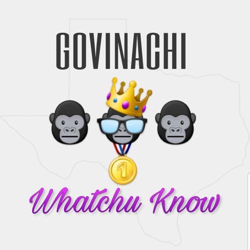 Whatchu Know by Govinachi
