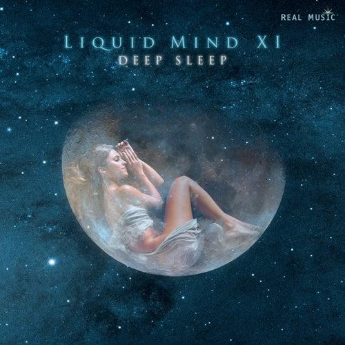 Liquid Mind XI:  Deep Sleep de Liquid Mind