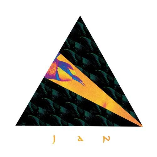 Jan de Jan