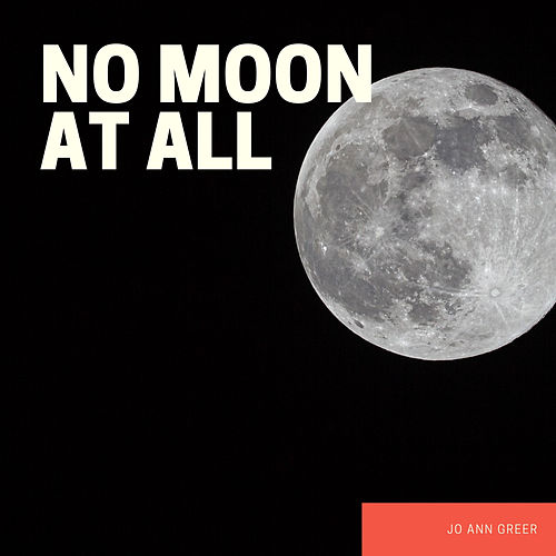 No Moon at All von Jo Ann Greer