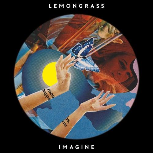 Imagine de Lemongrass