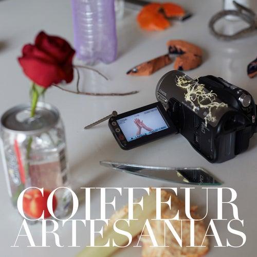 Artesanías de Coiffeur