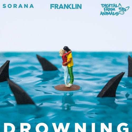 Drowning (feat. Sorana) von Franklin