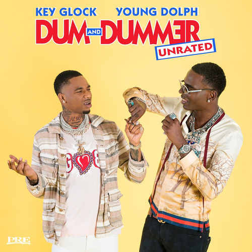 Dum and Dummer by Various Artists
