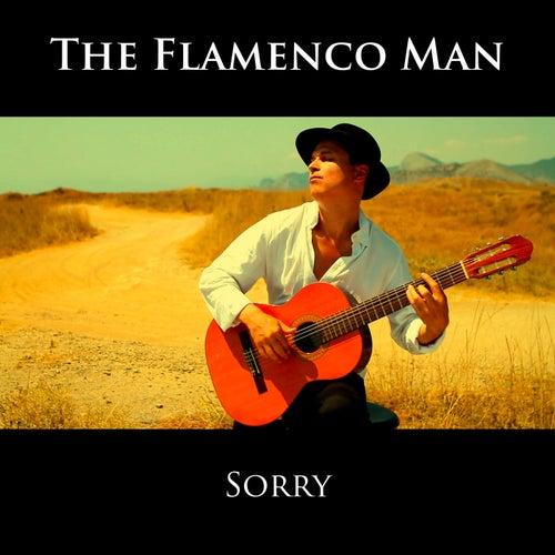 Sorry (Instrumental) von The Flamenco Man