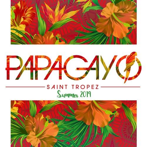 Papagayo Summer 2019 de Various Artists
