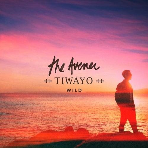 Wild de The Avener