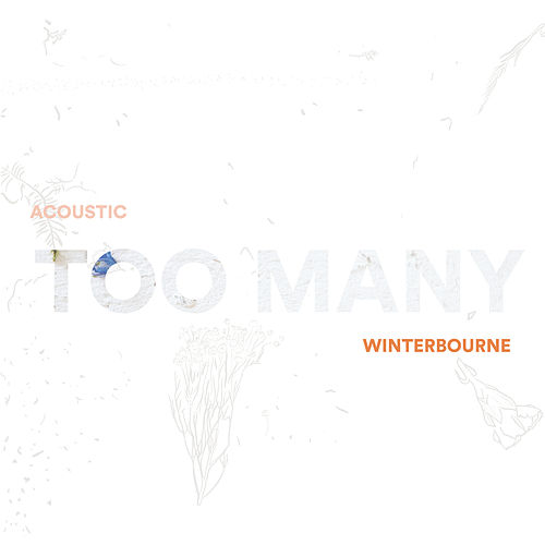 Too Many (Acoustic) von Winterbourne