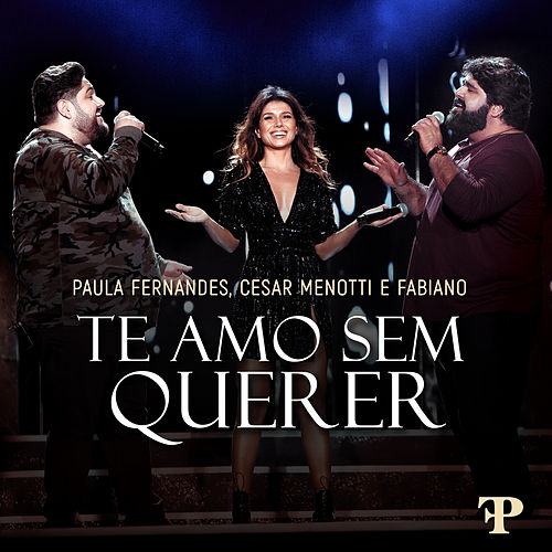 Te Amo Sem Querer (Ao Vivo Em Sete Lagoas, Brazil / 2019) von Paula Fernandes
