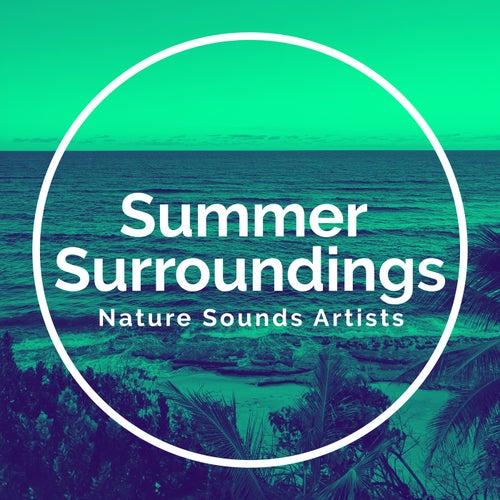 Summer Surroundings de Nature Sounds Artists